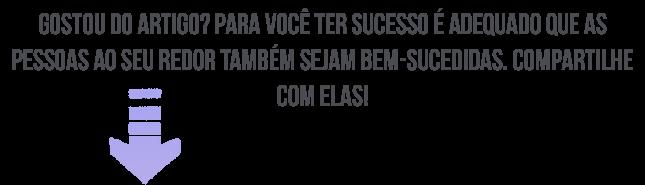 bem-sucedido
